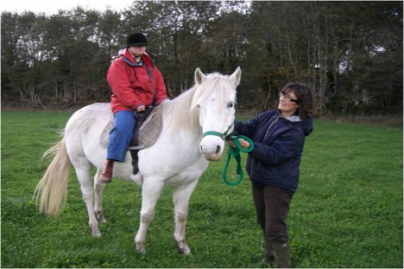 Activité cheval
