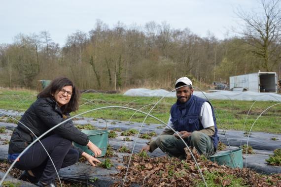 personnes de l'arche travaillant dans un jardin
