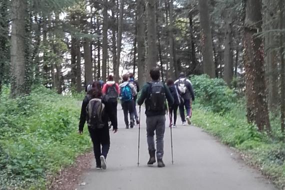 personnes détenues en promenade en foret
