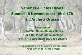 larche-grasse-cueillette-olives-2019-arche-handicap